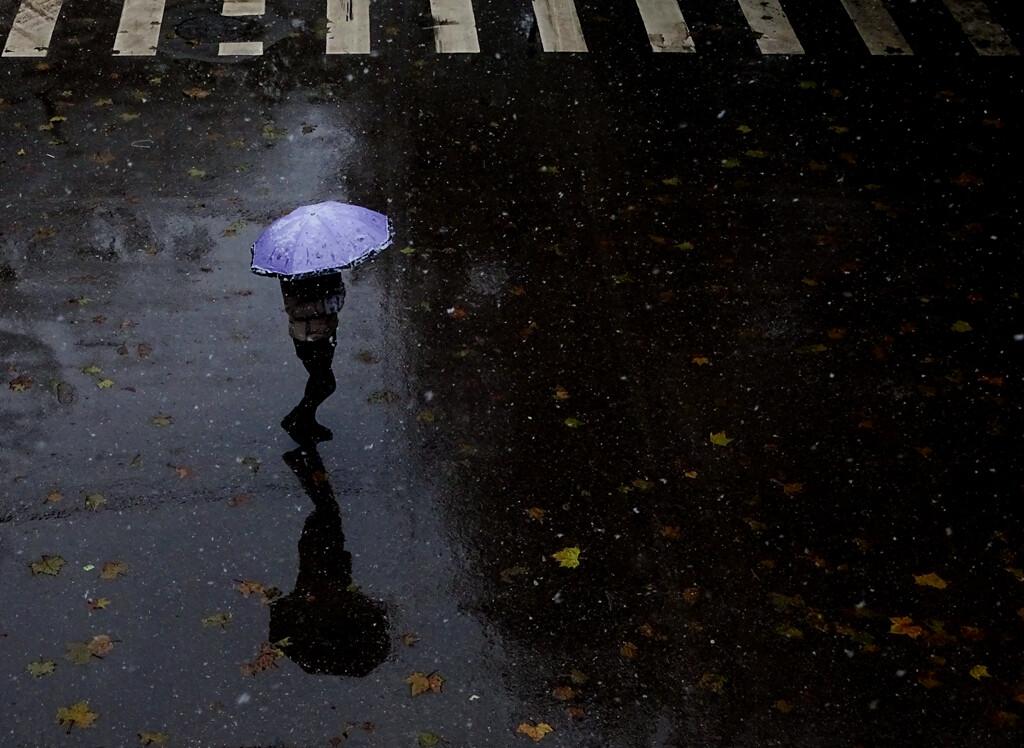 风雨中唯美图片