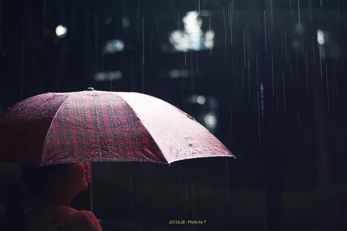 的歌_少年听雨歌楼上,红烛昏罗帐