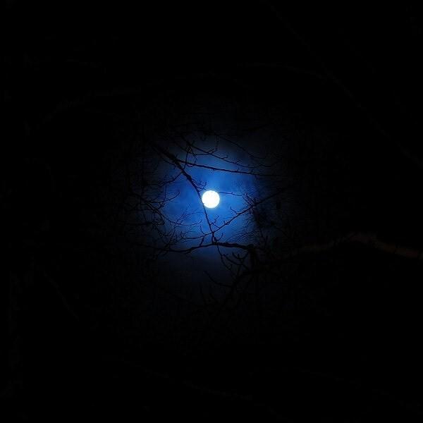 夜晚, 月亮, 黑暗