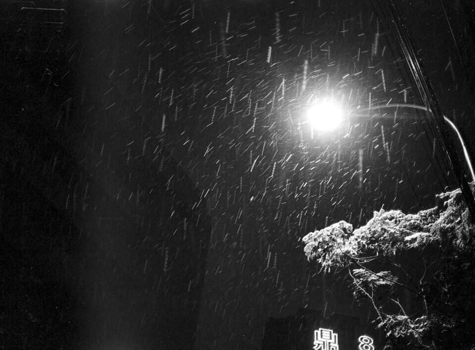 风雨中-夜雪