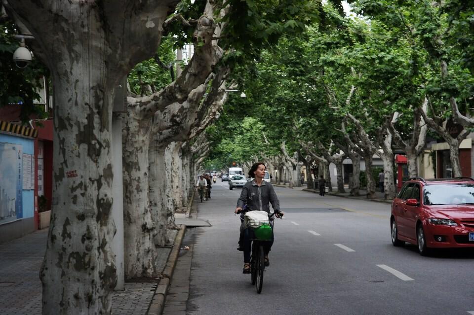 汾阳市人口-复兴路 汾阳路