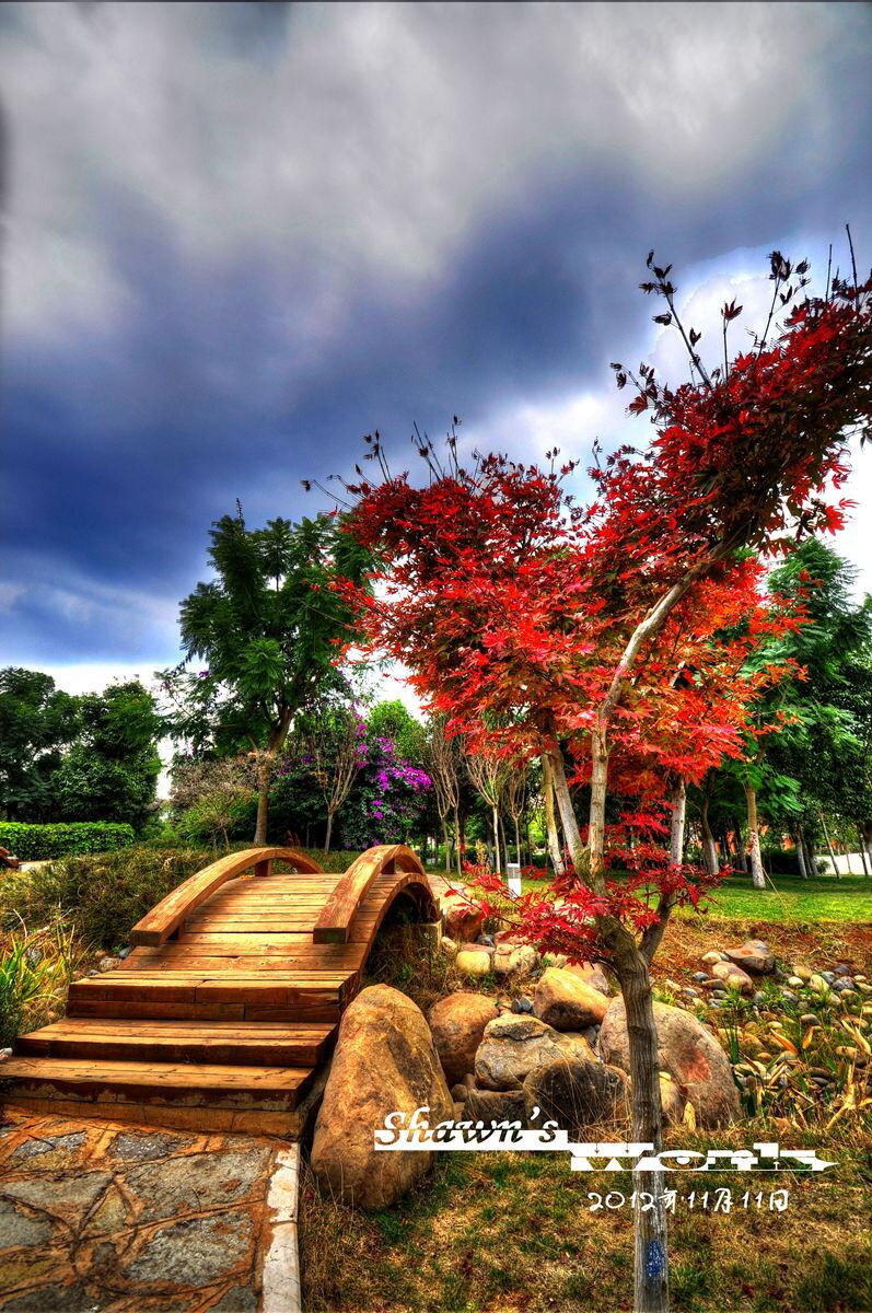 昆明医科大学的呈贡校区高清图片