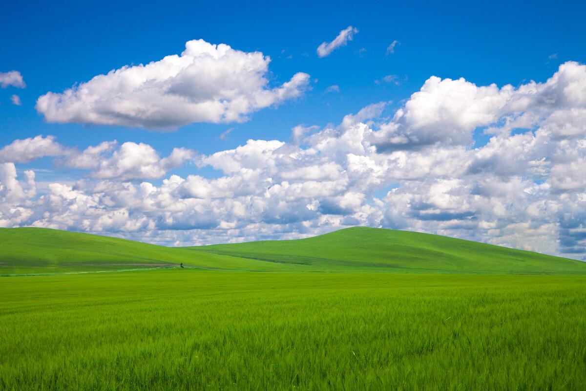 呼伦贝尔大草原这不是xp的壁纸.