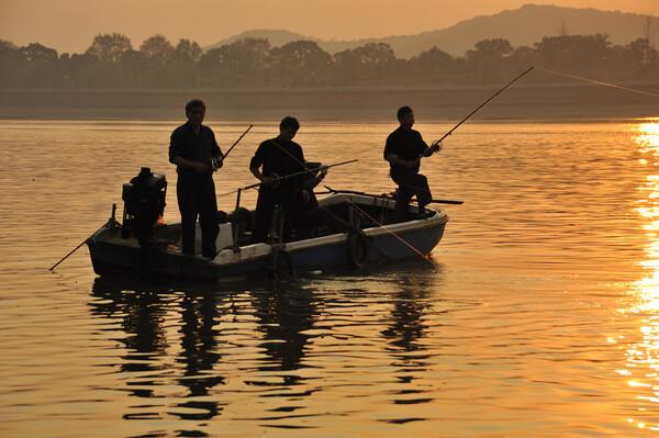 钓鱼与气压 - 清荷 - 清荷的博客