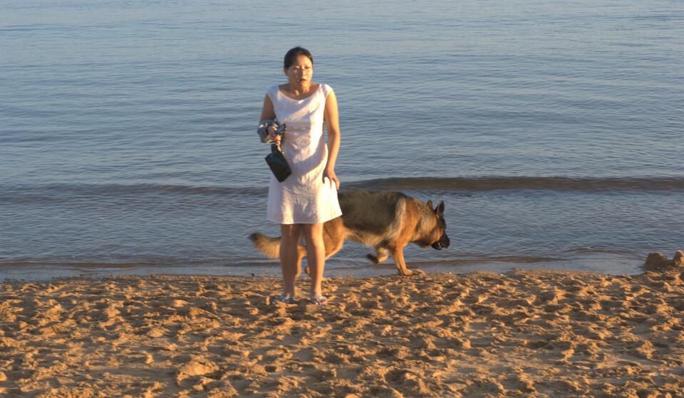狗和人�y�'��)�al�����:)�h�_4带到了地上摔了一下,遮光罩身亡),就按了唯一的一张,狗和人就都离开