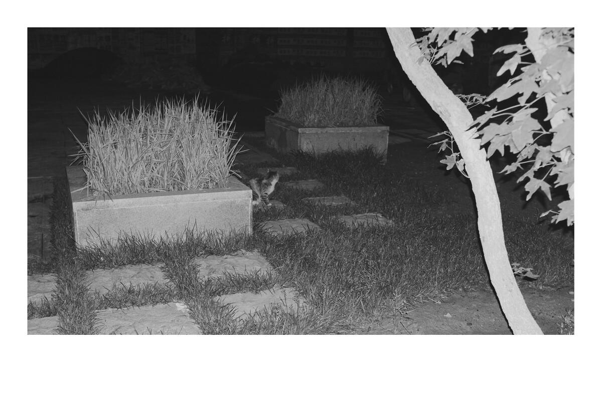 4叵gi�abyJ�K�K��x*�_4 - mr_privateeye - 图虫摄影网