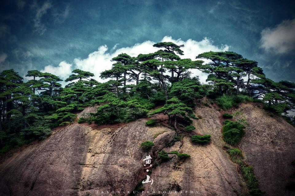 黄山の画像 p1_21