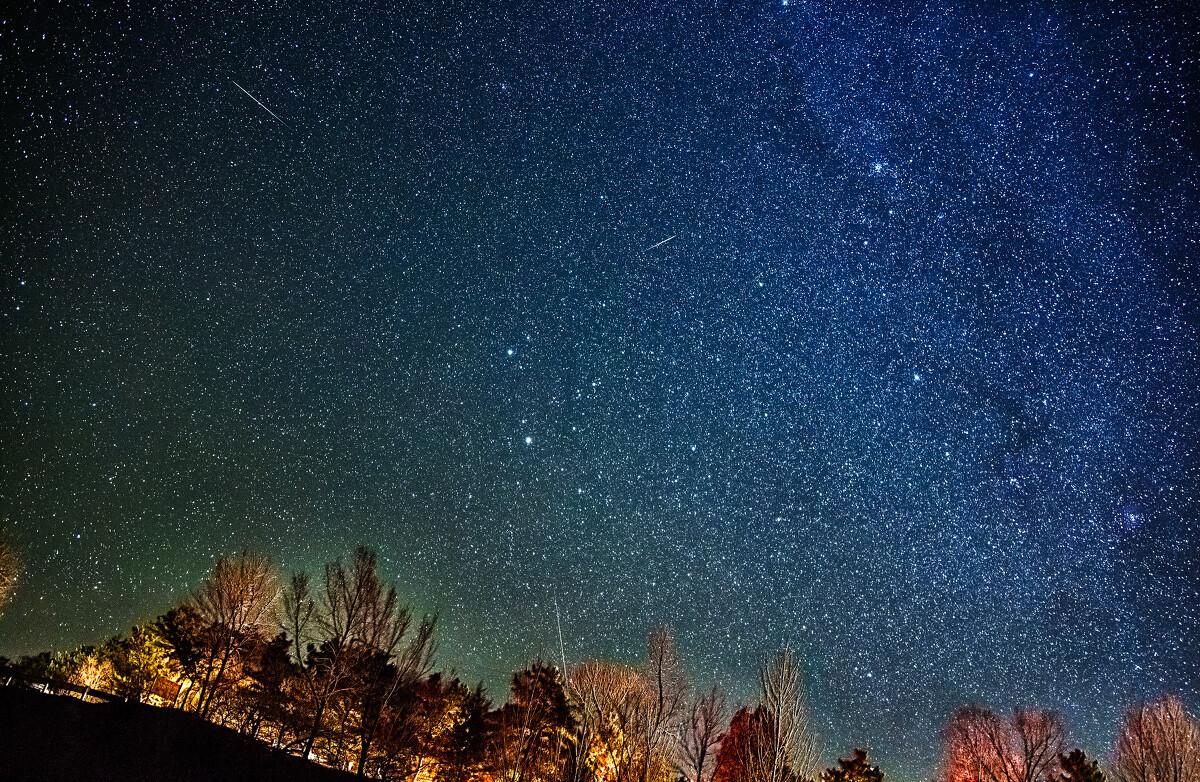 图中央的两颗亮星就是双子座.