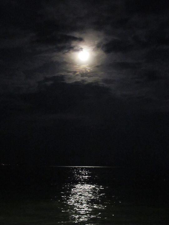 月光航线大结局阅读